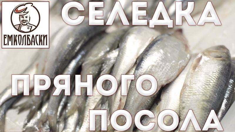 Сельдь пряного посола Рецептура для рассола Отделение филе от костей