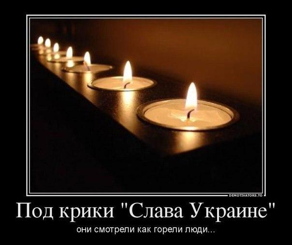 http://cs608728.vk.me/v608728128/88fa/kfA-9NZgfnI.jpg