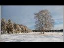 Там,среди русских полей.Поёт М. Евдокимов.Автор клипа Lusy Diuk.