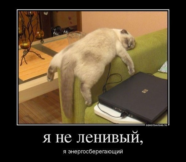 Yana Zhdanova updated her profile picture: