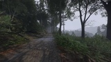 Kingdom Come Deliverance Beta - Walk in the Woods (SlowMo)