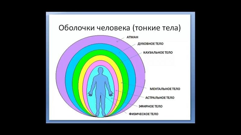 Тонкие тела человека оболочки их строение и функции