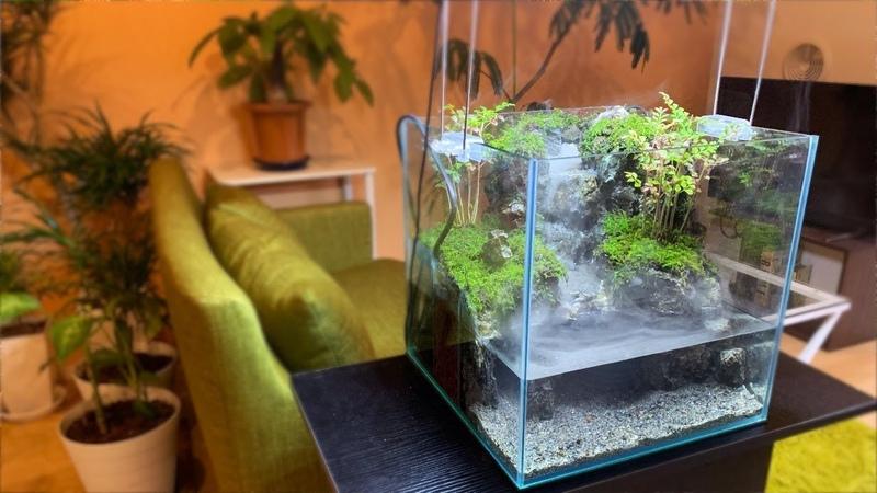 ミストメーカーと水中ポンプを使って神秘的な滝を作る【AquaTerrarium Making】