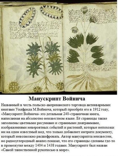 Фото №371087203 со страницы Александра Мальцева