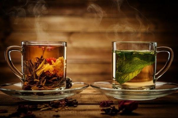 я поставила на стол две кружки ароматного травяного чая и села напротив существа: — так кто, ты говоришь, такой маленькие лапки обхватили чашку чая, и оно пробормотало: — настроение я. — как это