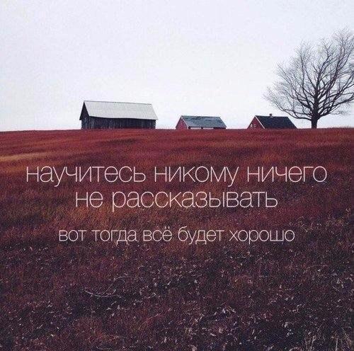 Фото №456239303 со страницы Ивана Хохлова