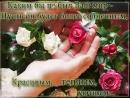Doc61852971_471396876.mp4