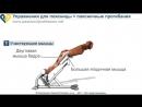 Упражнение на спину Гиперэкстензия