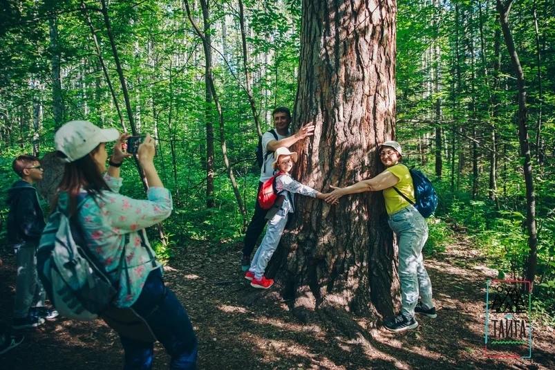 всего применяют а лес зовет фото возлюбленные господе отцы