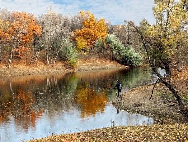 Ловля судака осенью