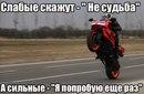 Александр Ефремов фото #49