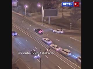 Собака спровоцировала аварию с участием трех авто во Владивостоке.