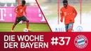 Alphonso Davies ist da ServusPhonzie Die Woche der Bayern Ausgabe 37