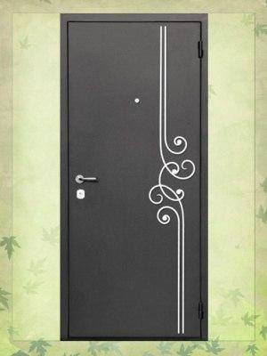 двери входные уличные истра