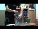 Видео мастер-класса Aquael - Часть 1
