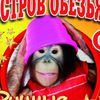 Остров обезьян в Чайковском
