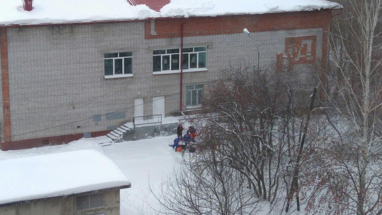 Скрыши тюменской школы сорвался человек