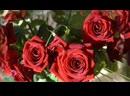 Нежная песня поздравления с днем рождения девушке , женщине .mp4