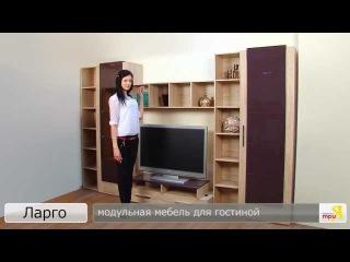 «Ларго» модульная мебель для гостиной