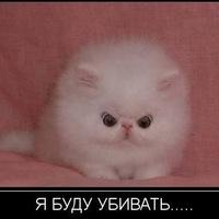 Марина Гамбеева, 24 февраля , Уфа, id165430532