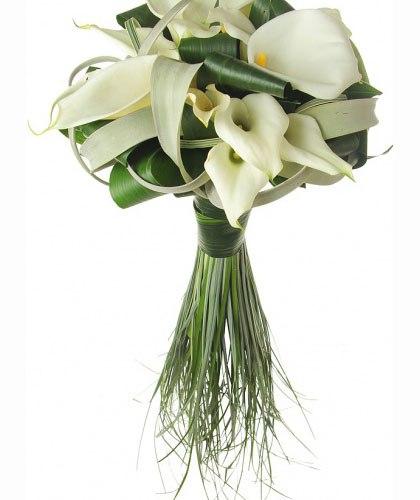 Купить семена гавайской розы в москв купить розы в макеевке