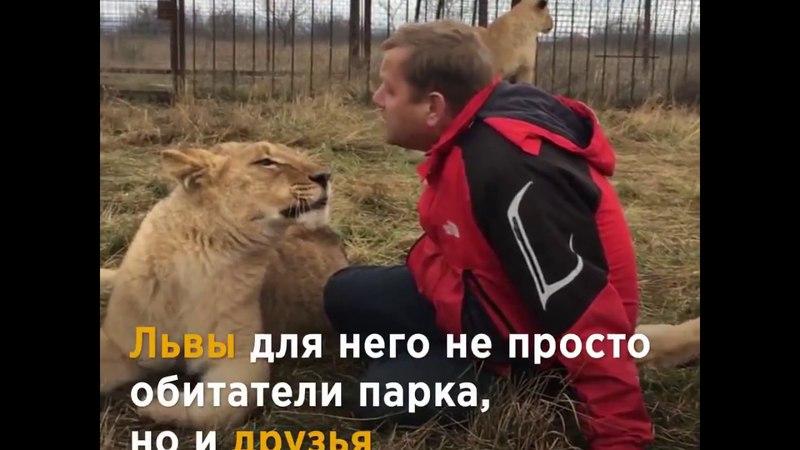 История отношений Олега Зубкова и львов!