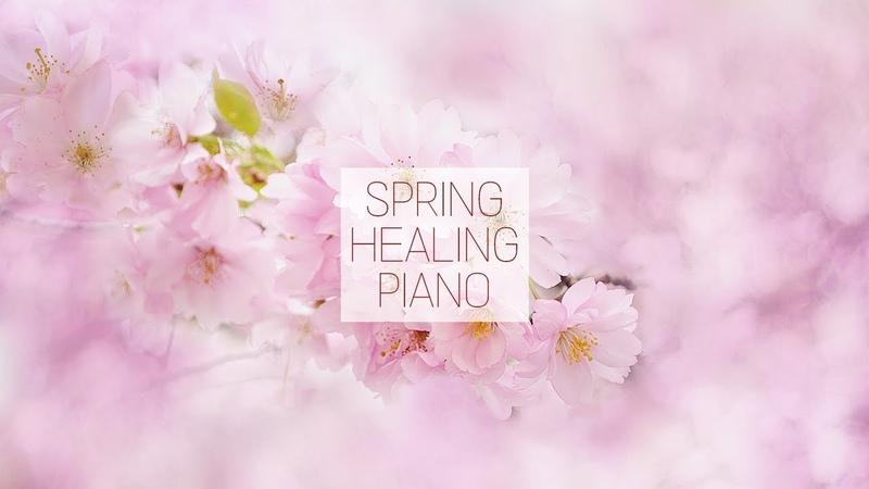 커버 봄에 듣기 좋은 가요 피아노 연주곡 모음 1시간   신기원 피아노 연주곡