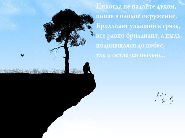 http://cs403720.vk.me/v403720791/9914/lYIZ-62J108.jpg