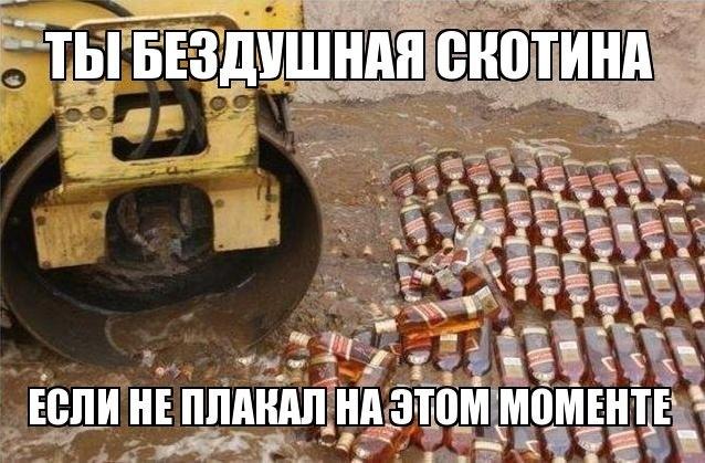 пьянство и алкоголизм - Страница 6 HD34v68inZc