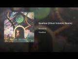 Swallow (Oliver Koletzki Remix)