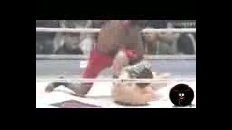 [v-s.mobi]MMA НОКАУТ ЗА 2 СЕКУНДЫ Чарльз Беннет Бешеный конь Charles Bennett Krazy Horse.3gp