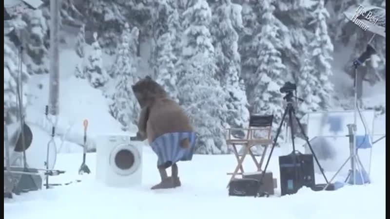 Медведь стирает шубу 😂