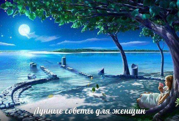 https://pp.userapi.com/c543105/v543105062/273d2/oK1-kw6UHTU.jpg