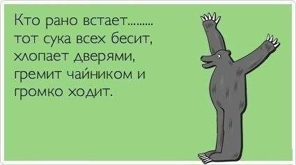 http://cs411226.vk.me/v411226486/584a/Lcz9z0SpzrM.jpg