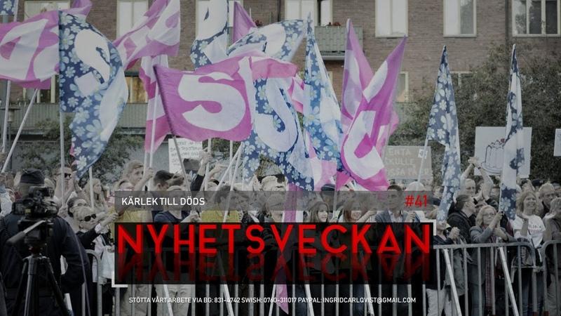Nyhetsveckan 41 - Kärlek till döds, Tafs-Nallegate fortsätter, valdags, dumstrut-Morgan