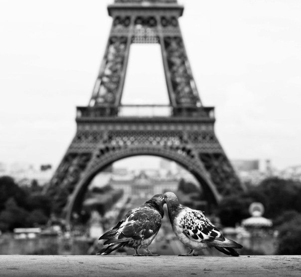 Парижская любовь