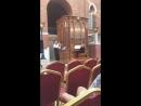 Царицыно труба и орган