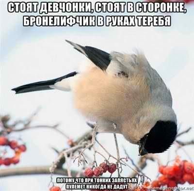 http://cs406221.vk.me/v406221993/5b09/GROKuyUVw7w.jpg