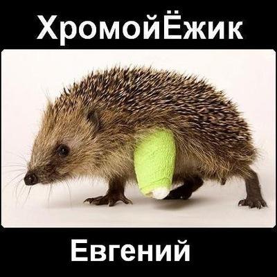 Ёжик Хромой, 16 января 1986, Иркутск, id201904509