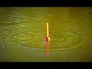 Рыбалка на карася. Ловля на поплавочную удочку. Эксперимент без прикормки.