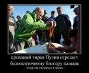 Сергей Наседкин фото #14