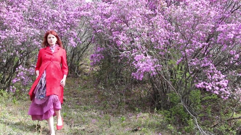 Цветущая весна Горного Алтая