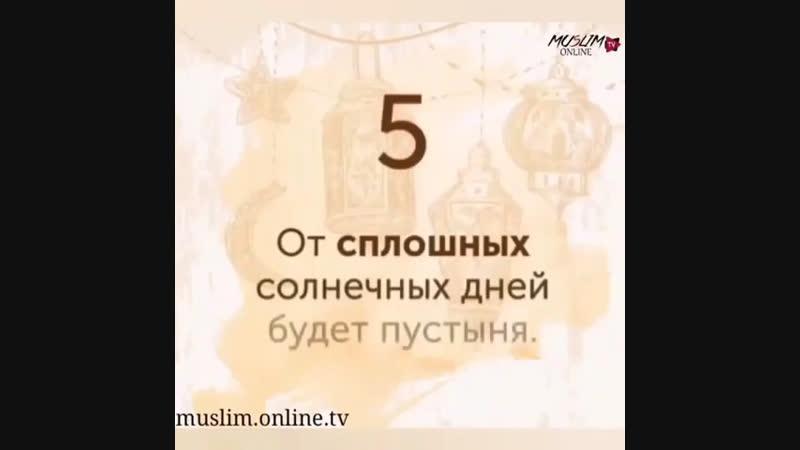 Арабская мудрость