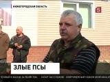 В Нижегородской области люди не знают, как спасаться от агрессивных собак-5 канал(27.03.2014)