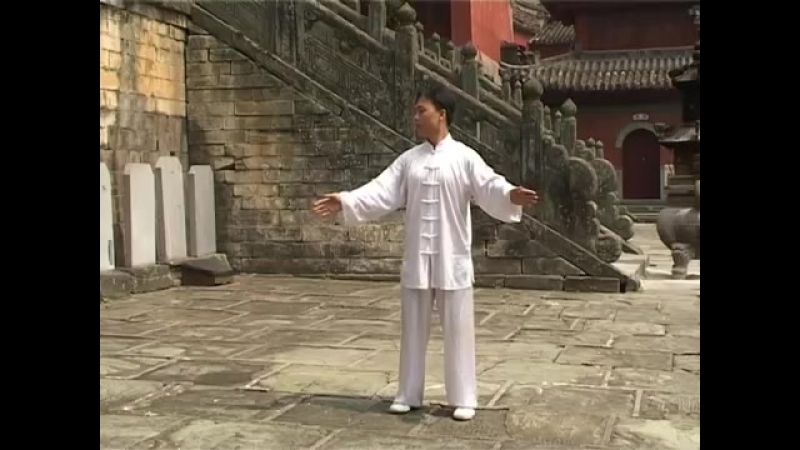 Мастер Ван Линь Ба Дуань Цзин 8 отрезов парчи