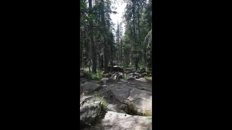 По красивейшему лесу на пути к священной горе