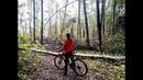 Велотрип Гонка по лесу