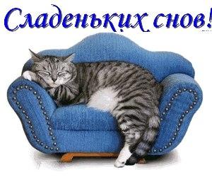 Lasy_Cat: Парфюмерный гардероб, предпочтения, комментарии и заметки.