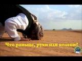 Абу Али аль-Аш`ари «Что раньше, руки или колени» [vk.com/al_ashari]