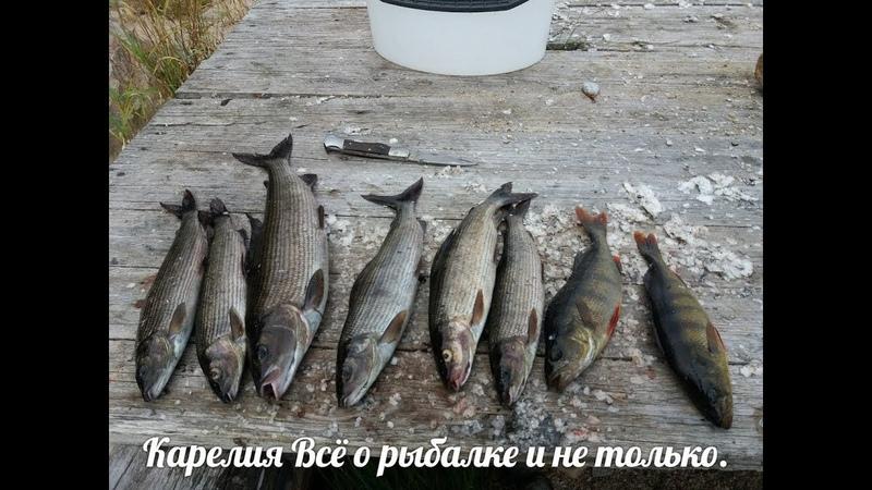 Отдых и рыбалка с друзьями и ночёвкой на Сегозере